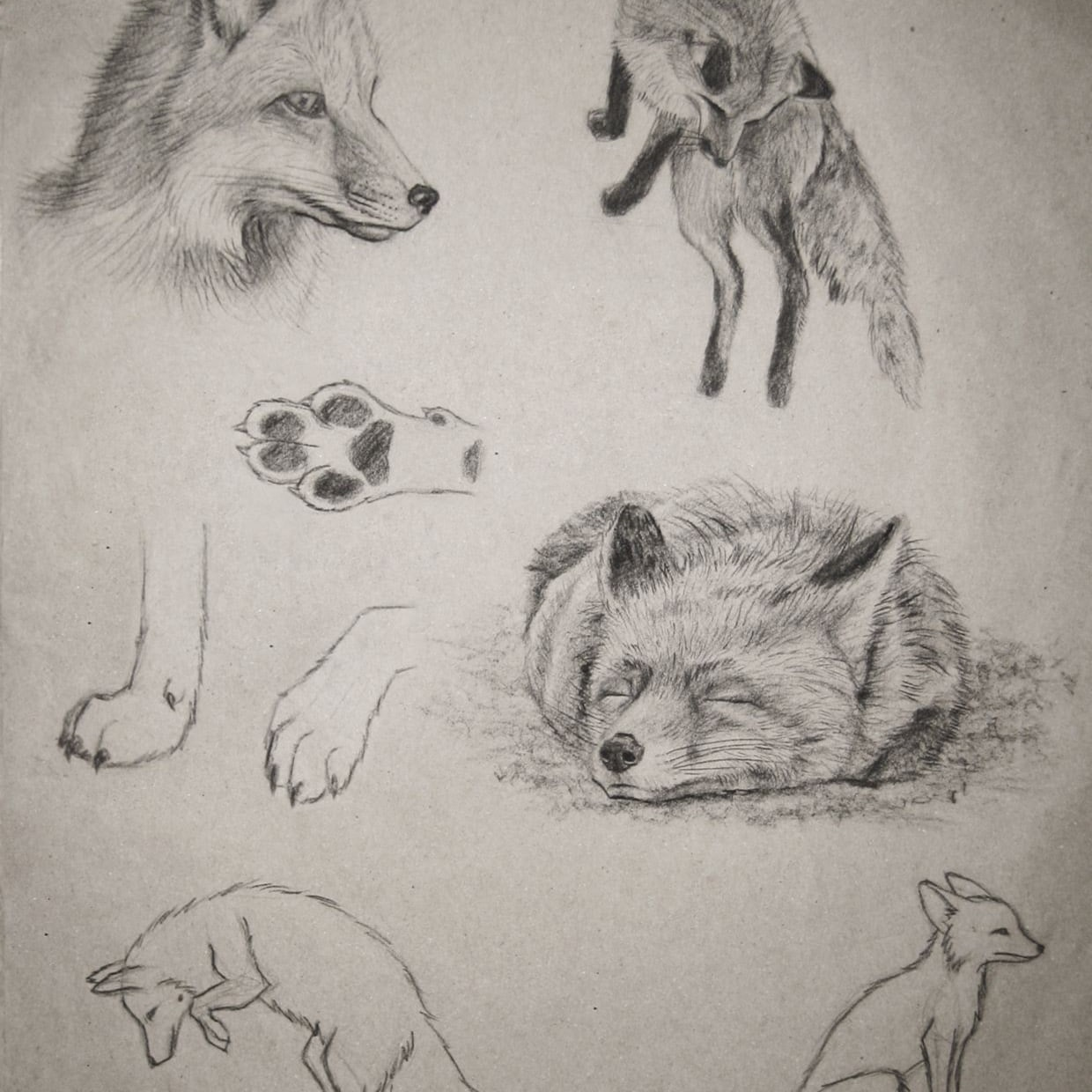 20+ Basic Drawing Techniques for Beginners Art Ideas