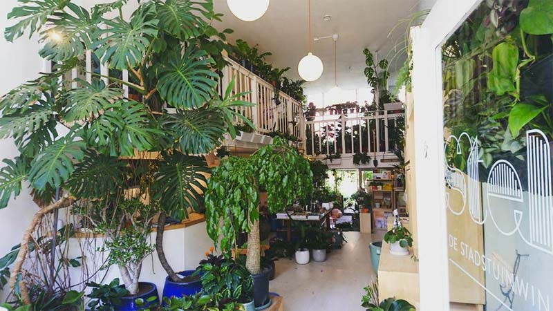These are the nicest plant shops! Living inspiration